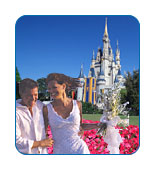 CruiseCheap.com's Top 10 Honeymoon Cruises - #9: Disney Dream